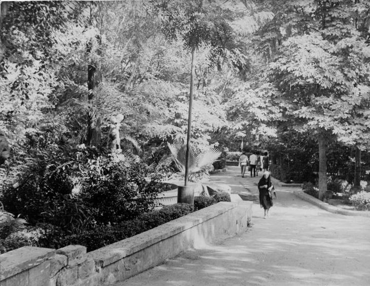 Фото 1968 года. Сад Пионеров, бывший Губернаторский