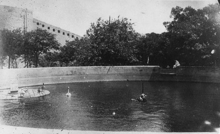 Фото 1920-х годов